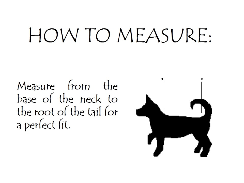 PawsShion how to measure