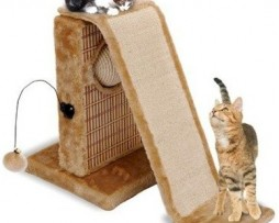 Cat Life Activity Center with slide