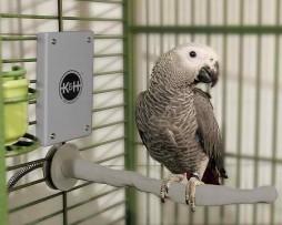 Bird warmer K&H pet products